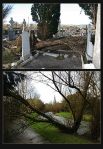 Above: The scene at Pembroke's side of Kilbanivane Cemetery after one of the trees there fell over and damaged graves and headstones in Wednesday's storms.  ©Photographs: John Reidy  Below:  Path Blocked, View Open. Damage done along the River Walk in Castleisland. ©Photographs: John Reidy