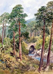 Torc Bridge By Mary Balfour-Herbert