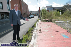 is hoping the €2,250 allocation will help sort out  the dereliction problem on this site on Castleisland's Limerick Road. ©Photograph: John Reidy 24-4-2014