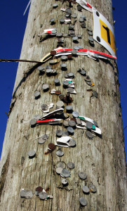 North Pole / South Pole. An ESB pole on Castleisland's Limerick Road showing the scars of many elections down through the years. It has found itself serving both the North and South Kerry and Munster electoral areas over the years. Photograph: John Reidy