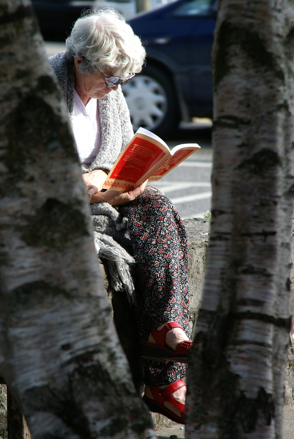 Listowel Writers' Week Shortlisted Poetry Collections Announced