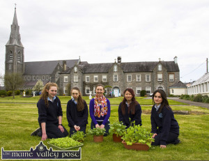 The 'One Good Idea' team. With teacher, Niamh Kelly on the Presentation Convent Garden are from left: Ciara Murphy, Christina O'Connor, Ms. Kelly, Ayano Ikai and Jackie Bonilla. ©Photograph: John Reidy