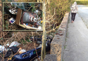 Illegal dumping is as much an urban problem as it is a rural blight. This dump - main picture and inset - is situated inside the boundary wall of Main Street houses and the local mart yard. ©Photograph: John Reidy