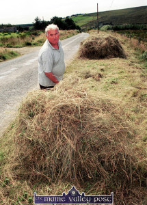 Hay on the long acre: Denis O'Callaghan saving hay by the roadside near Brosna's famed Black Banks in 2002. ©Photograph: John Reidy 23/08/2002