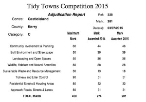 Tidy Towns Graph 2015