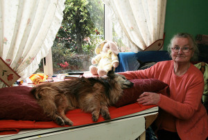 Chris Birmingham-Doody with her late and beloved Rex after he passed away in May 2012 at home in Desmond's Avenue. ©Photograph: John Reidy