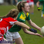 Kerry U-16A Ladies Cruise Past Cork with Polished Display