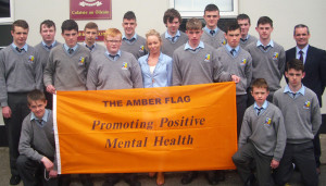 Third Year Students from St. Patrick's Secondary School, Castleisland who were awarded the Amber Flag this week. Front from left: Ethan Kerin, Tommy Brosnan and Lorcan Hickey, Middle row from left: Anthony Bird, Charlie Conway, Tommy Curtin, Ms Collins, Adam Fallon, Padraig O'Connor, Denis O'Mahony and Denis O'Donovan Principal. Back from left: Darragh O'Connor, Alek Starczak, Adam Manley, Dylan Browne, Moss O'Callaghan and Ronan Walsh. Photograph: Courtesy of St. Patrick's