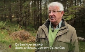 Dr. Eoin Healy, UCC School of Biology will participate on the Irish TV documentary.