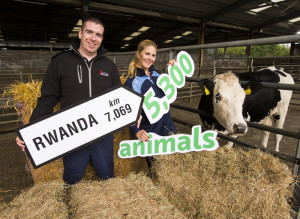 Shane McAuliffe,  Interchem and Niamh Mulqueen from Bóthar pictured at Roscrea Mart where the organising of the animals was taking place prior to travelling to Shannon Airport. Photograph: Diarmuid Greene / True Media
