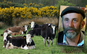 Deputy Danny Healy Rae raising concerns about TB infected cattle being allowed to remain on farms. ©Photographs: John Reidy