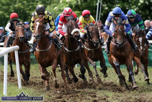 The colour, the excitement and the thunder of hooves of a two-day race meeting will return to Powell's Road over the June bank holiday weekend. ©Photograph: John Reidy