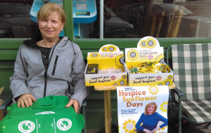 Trish Healy busily volunteering for the Kerry Hospice Foundation Sunflower Day in Castleisland this morning. Photograph: Liz Galwey