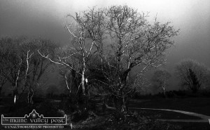 Strange weather conditions throughout the country at present. ©Photograph: John Reidy