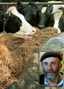 Deputy Danny Healy Rae has called on Minister Creed and the Kerry Group to come to the aid of Kerry farmers. ©Photographs: John Reidy