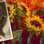Seeking Support for Friday's Sunflower Day in Castleisland