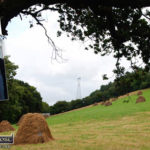 Make Hay While the Sun Shines – Deputy Michael Healy Rae