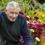 Billy's Efforts Benefiting the Birds and the Bees