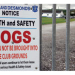 An Urgent Appeal to Dog Owners Using An Riocht and the River Walk
