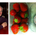 Supporting Local Strawberry Growers in Season – Cllr. Farrelly