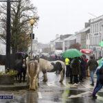 Enquiries on O'Keeffe Festival and Horse Fair as we Turn into Autumn