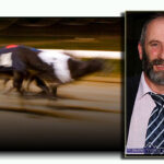 An Attack on the People of Kerry and on Greyhound Supporters – Danny Healy Rae, TD