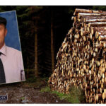 Healy Rae Supports Calls to Protect Forestry Jobs and Citizens' Rights