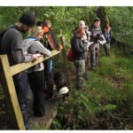 Kerry College Announces New Ecology & Fieldwork Skills Programme