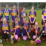 Sliabh Luachra Camogie Club 'Delighted' with U-12 County Title Win