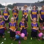 Sliabh Luachra Camogie Club in Second Weekend Final on Sunday