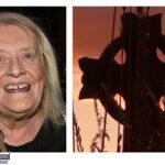 The Late Mary B O'Sullivan, Currans, Farranfore and Meenleitrim, Knocknogoshel