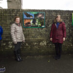 Community College and Tidy Towns Combine in Biodiversity Management Plan