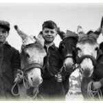 Castleisland Donkey Derby 1950s? Can You Name the Boys ?