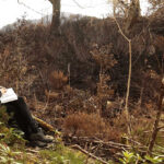 Drawing Workshops for Biodiversity Week with Kerry Visual Artist in Residence