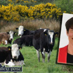Minster Foley Welcomes Over €14 Million in Payments for Kerry Farmers